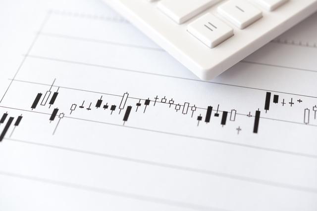 FXで利益がでたとき、損失がでたときの確定申告